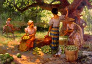 fruit pickers harvesting under the mango tree
